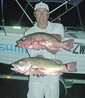 Andrew shows the quality of jacks you can catch in the Pumicestone Passage after dark.
