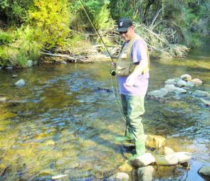 Darren Howe landing a small rainbow in the Gibbo River.
