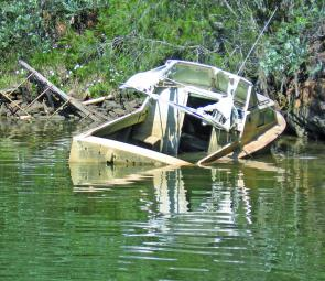 It may be a half sunken boat, but bream and bass it's home in the Woronora River.