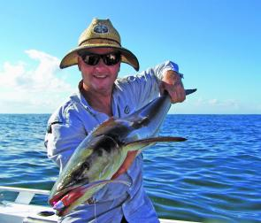 A Sunshine Reef cobia that liked the look of Lance McFayden's plastic offering.