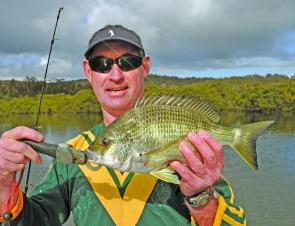 There are hundreds of bream like this in the Bega River.