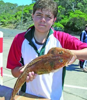 Tiger flathead are favoured by offshore fishos young and old.