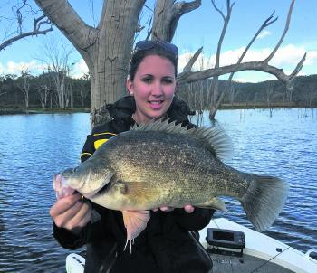 Not all the action will be on lures this month. Sabrina Hobson caught this cracker 50cm yellowbelly on a live shrimp in Cania Dam.