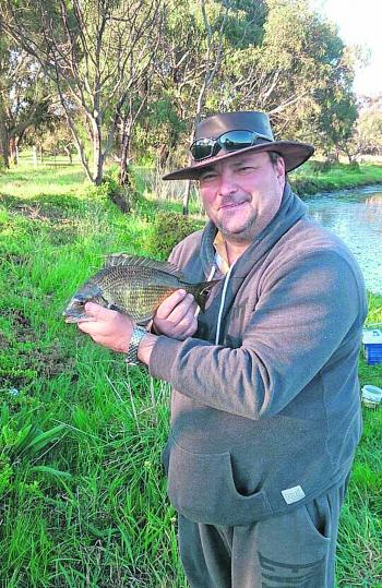 Roy Cusani managed some nice bream to 35cm on live sandworm from the upper tidal reaches of the Werribee River.