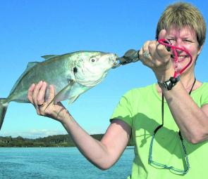 Trevally of all sizes are to be found in the Bega River and off Tathra Wharf.