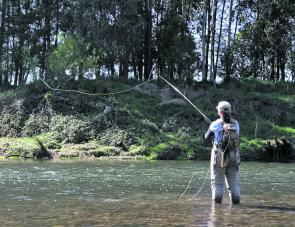 Sending out a searching dry on the fly. The shallow runs and riffles, interspersed with deep, slow pools mean any flyfishing passion can be practised on the Goulburn River.