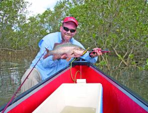 This early season mangrove jack took a perennial favourite lure, the gold Bomber.