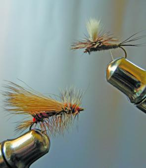 A Stimulator, left, and a Parachute Adams make a deadly fly combo on New England streams at present.