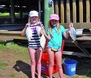Fraser offers some great beach fishing for the kids and the dads. Dart like this are a great meal and good fun on light line in the suds.
