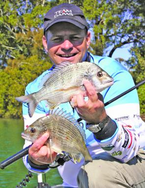 The author with two bream caught around the oyster leases in Limeburners Creek. Tournament anglers will be looking for good catches this month.