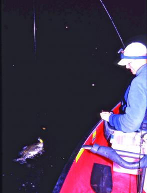 Night time is bass time over Summer, as the buzz of beetles and bugs takes over from the din of the cicadas .