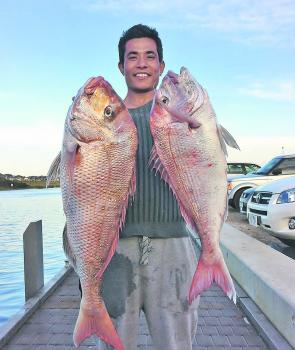 Expect some quality snapper like these two jumbo summer models to be taken over the next couple of months as the post-spawn feeding pattern takes hold. Photo courtesy Matt Cini.