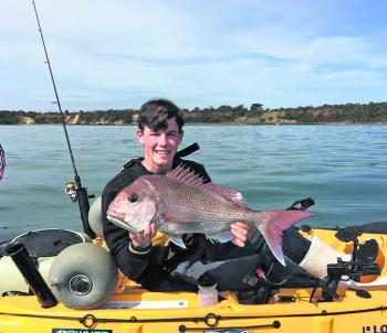 Kayak and boat anglers using lures have had a lot of success on the good numbers of lingering snapper.