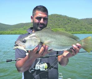 Mulloway will come on the chew this month. Soft plastics and fresh or live bait will account for fish.