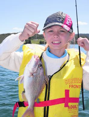 This little snapper was taken on a long-shanked hook. Different hook shapes suit various baits and target species.