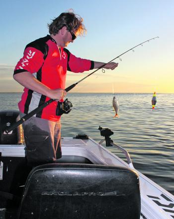 Live baits can be either fished at anchor or slow trolled behind and electric motor.