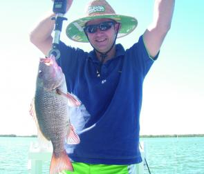A miracle mangrove jack, caught on chicken gut at the mouth of the Pinpama River by Ryan Capper.
