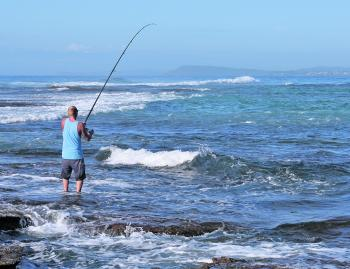 Rock and beach fishing is normally red-hot during the month of May. Almost every species is hungry and in good numbers.