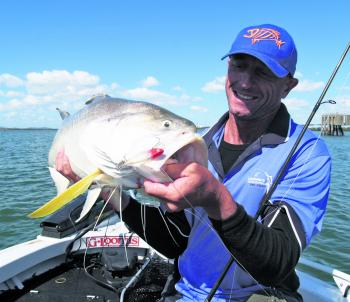 King threadfin are another common by-catch when chasing snapper in the river.