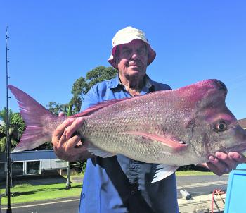 Huge snapper like this one can be found around Black Rock this month.