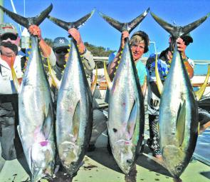 A good haul of yellowfin tuna caught trolling grounds up to 40 miles offshore.