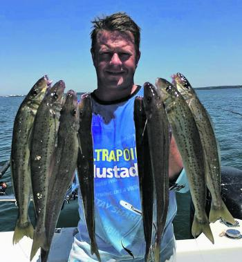 The author with his hands full of quality whiting from Western Port.