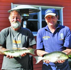 Local anglers, Ray Hogg and Kevin Gillard, with their catch of luderick ranging from 1.32kg to 1.55kg caught in the lake on sandworm. The fish were caught on worms out in the middle of the lake between the Mahoganies and the boat ramp in about 2m of water