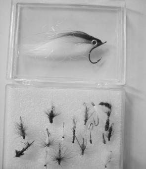Smaller fly patterns are the go for trout over the next couple of months. The polar fibre minnow shows the difference.