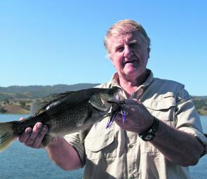The author caught this bass from the bank at Glenbawn on a Bassman Mumbler.