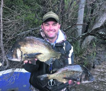 Andy Kolber with some thumping black bream he caught on a recent trip, which were released after the photo.