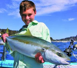 The author's 'lucky charm', Saxon Welsh, 11, does it again with another monster kingfish. This one was caught in Pittwater.