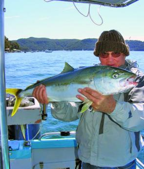 'Boxing Doc' Tom Fogarty with an 81cm kingfish caught at Bothams Reef.
