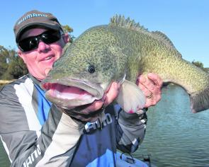 Rod MacKenzie with a Murray cod caught around Mildura on a King Mong hardbody lure.