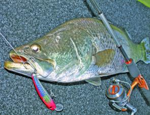 Threadline tackle can be used but bigger lures and bigger fish make the job hard and reduce your casting accuracy.