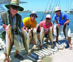 The amberjack have been firing!