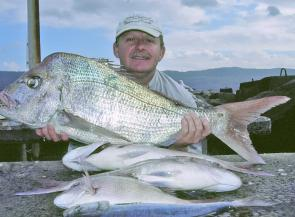 Snapper are on the menu and catches like this are the order of the day this month.