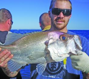 Kyle Gun with a quality pearl perch taken on a Fishing Offshore Noosa charter.