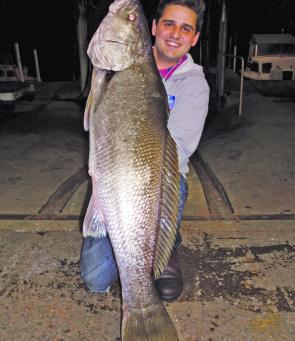 Years of dedication finally paid off for Nick Vasiljevic when he cracked it for a giant metropolitan mulloway that weighed-in agonisingly close to the 20kg mark.
