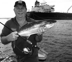 The author caught this 66cm kingfish in Botany Bay on a soft plastic.