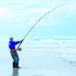 Fishing the beaches gives you access to some great fish like tailor, bream, whiting, dart and flathead. Here an angler is solidly hooked onto a big greenback tailor.