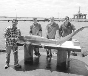 Jay Cosson, Ben Heafield, Graeme Weldon and Simon Chalmers with a great thresher shark.