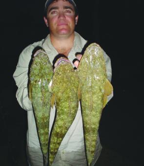 It is a great time to chase a few shore-based flathead on artificials as Tyrone found out with these three rippers.