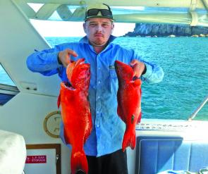 Tim Lewis caught these coral trout at Barren Isle.