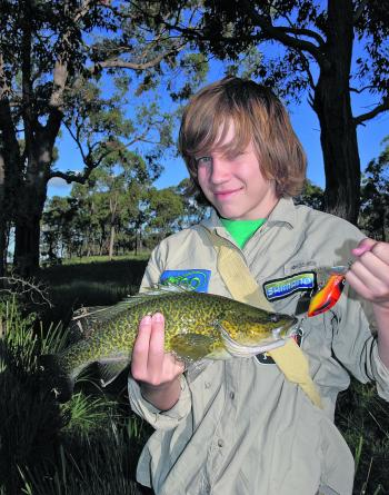 Murray cod don't have to be big to be fun, especially off the surface.