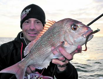 Though the best of the snapper season has passed, working the inshore shallow reef areas with soft plastics should still see plenty of quality pinkie snapper turn up this month.