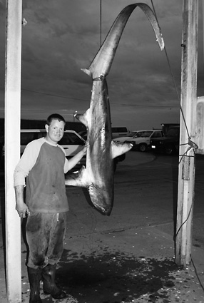 Cameron Ordner with his prize-winning thresher shark which he caught off Warrnambool.