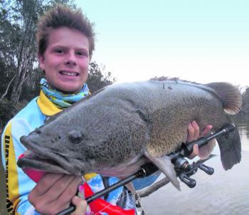 The author, Kaleb Oxley shows off an 86cm Murray cod.