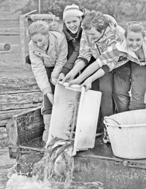 Issy, Catherine, Jess and Claudia releasing some of the bream caught in the Glenelg River during the recent Vic Bream Classic.