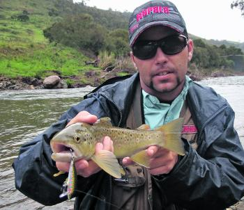 The trout fishing in our local rivers and streams has been red hot so far this season and should continue in this fashion.