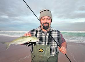 Spinning with lures is very effective during a rising tide as the fish will push in close.